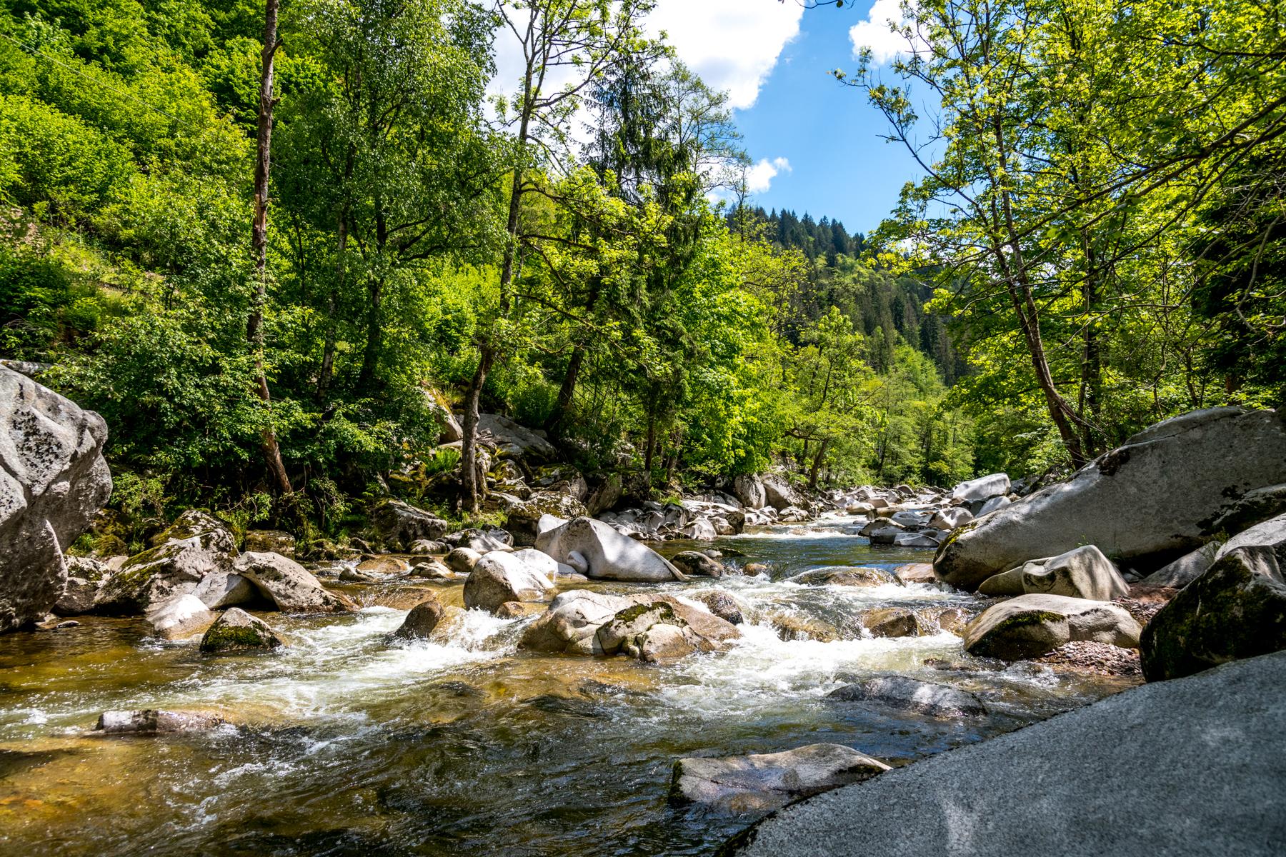 Naturpark_Schwarzwald_Mitte-Nord_Murgtal(c)TMBW_Lengler