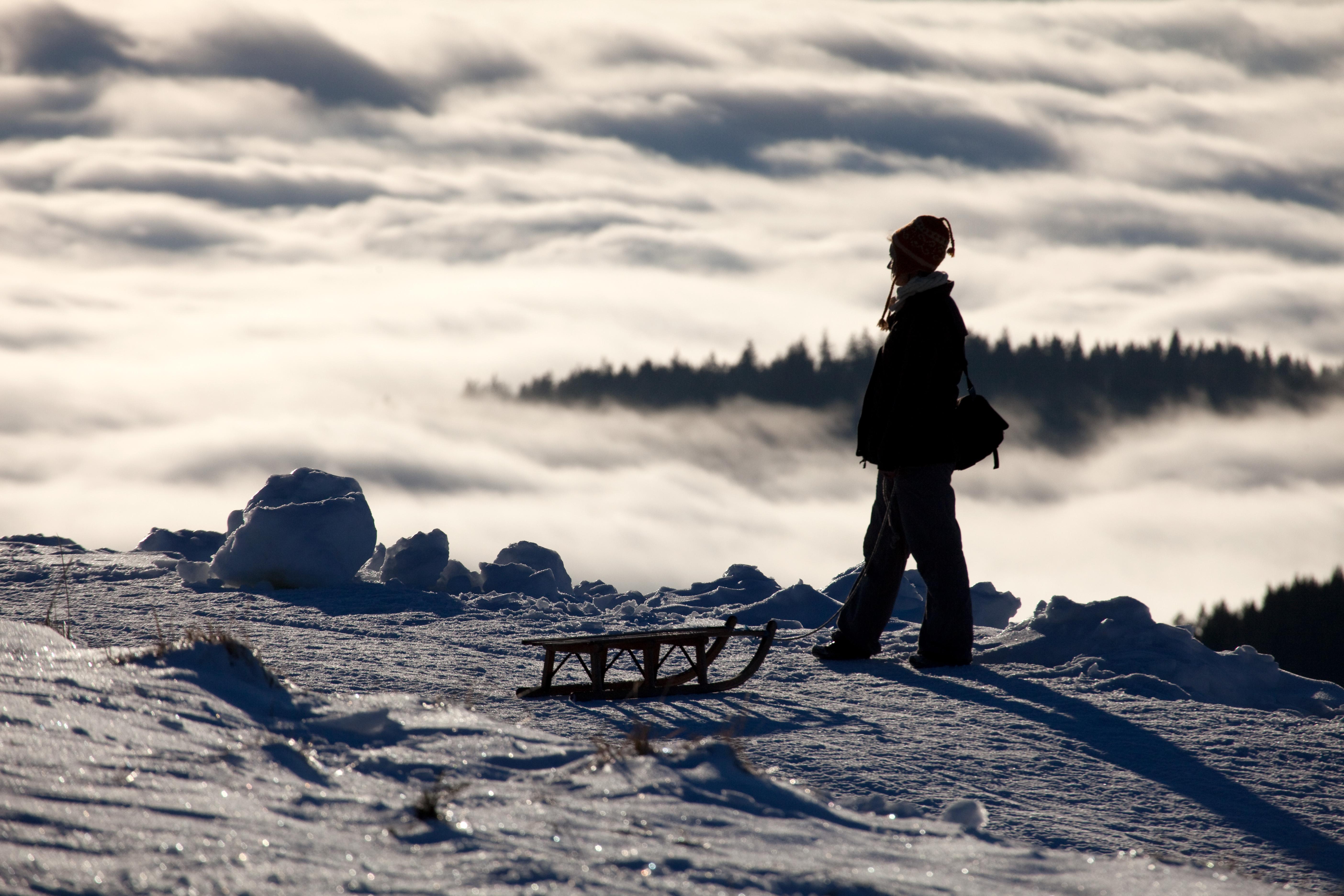 Wilder Winter Feldberg