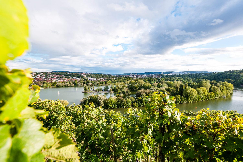 Weinland Württemberg, Weinregion Stuttgart - Steillagen